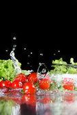 Cherry-Tomaten und Salat