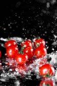 čerstvá rajčata mokré