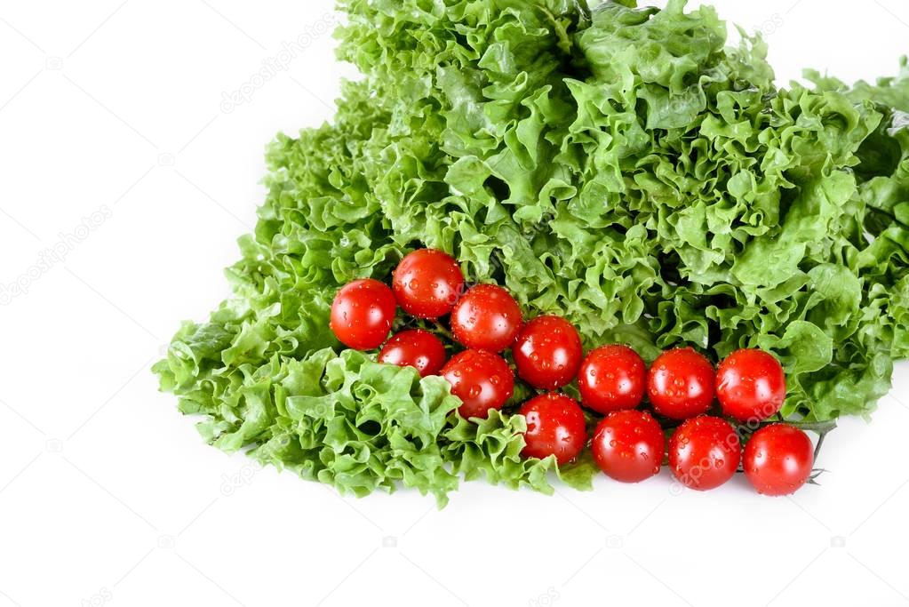 lettuce salad leaves with tomatoes
