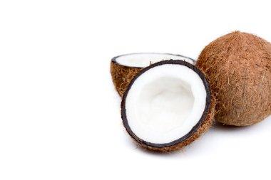 organic ripe coconuts