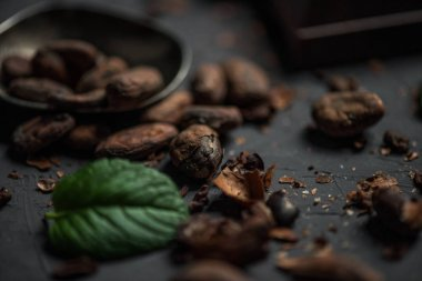 cocoa beans with mint leaf on tabletop