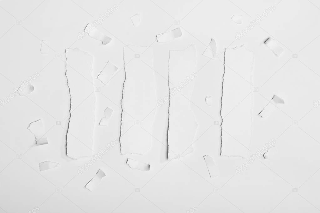 torn empty white papers