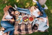 Fotografie rodina pikniku