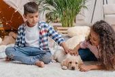 Fotografia Bambini multiculturali con il cucciolo di labrador
