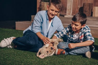 boys playing with labrador puppy