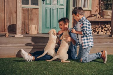 boys playing with labrador puppies