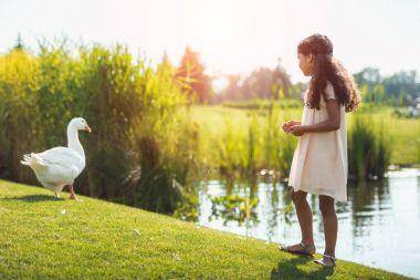 Kız beslenme kaz Gölü yakınındaki