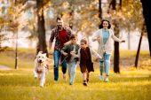 rodina se psem v parku