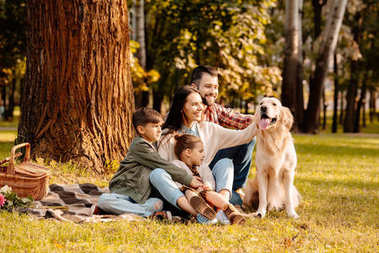 Family on picnic petting dog