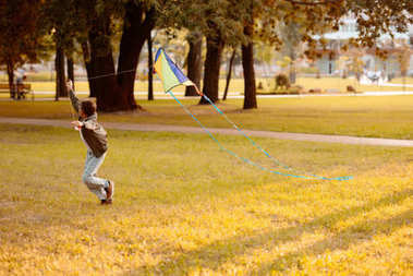 Boy flying kite in park