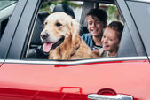 kids sitting in car with dog