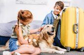 Fotografie Kinder Hund streicheln