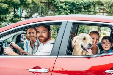 Happy young family travelling by car with dog stock vector