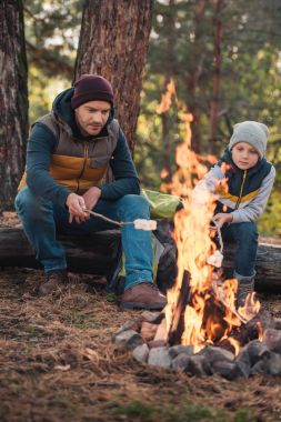 father and son cooking marshmallows in forest