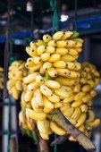 pobočka banánů na trh