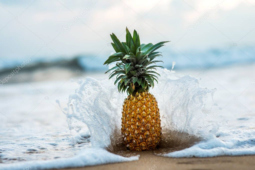 pineapple standing on seashore