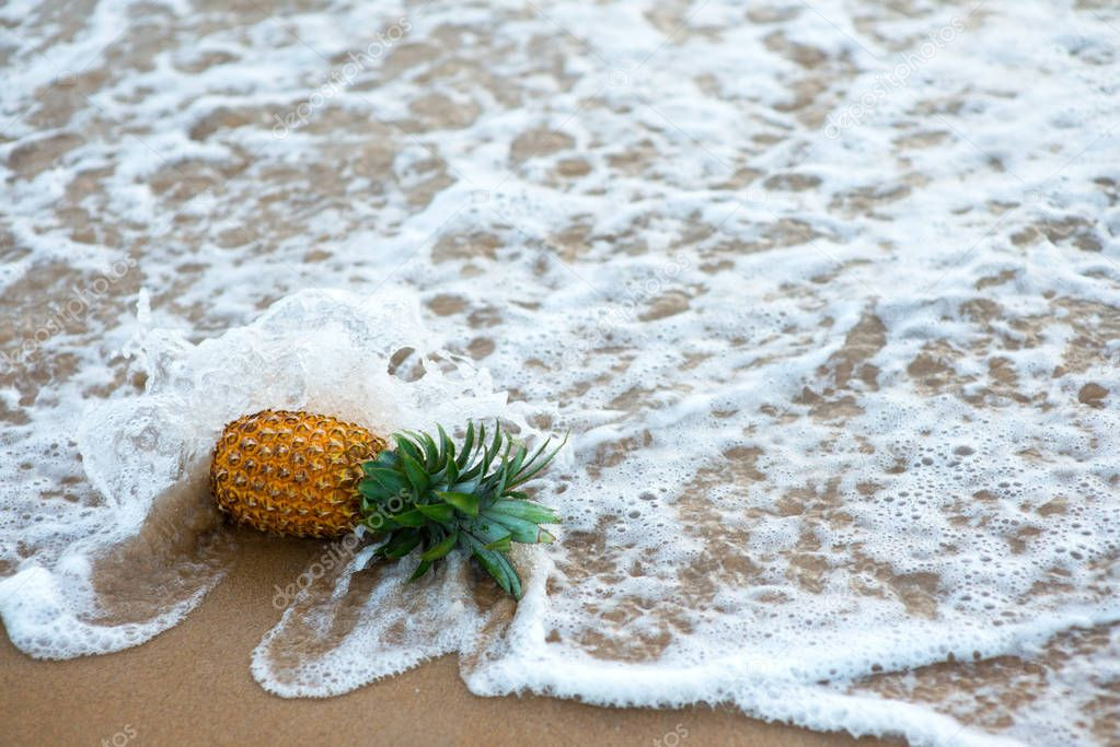 pineapple fallen by ocean wave