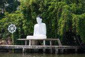 socha Buddhy na břehu řeky