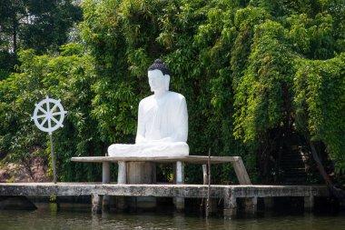 Buddha statue on river bank in Sri Lanka stock vector