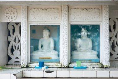 Buddha statues behind glass at Sri Lanka temple stock vector