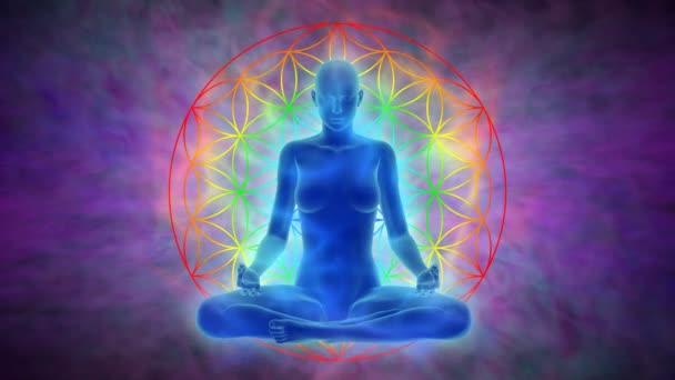 Meditace - žena s aura, čakry aktivace a osvícení mysli a symbolem květu života, animace s uhd / 4 k rozlišení