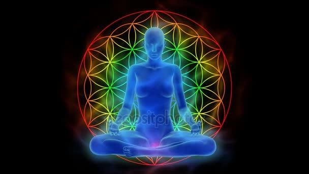Aura, čakry aktivace, osvícení mysli v meditaci, symbol květ života - animace s uhd / 4 k rozlišení