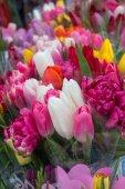 Květinové pozadí růží. Odrůda tulipánů v kytice