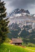 Jarní krajina ve švýcarských Alpách. Údolí Grindelwald, Švýcarsko.