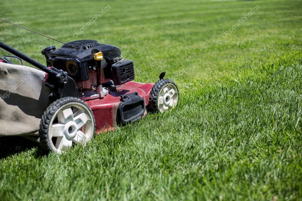 Mowing the lawn in the front yard