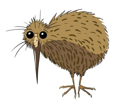 Cartoon image of kiwi bird
