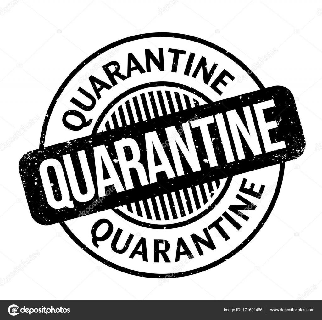 Quarantine Rubber Stamp Stock Vector Lkeskinen0 171691466
