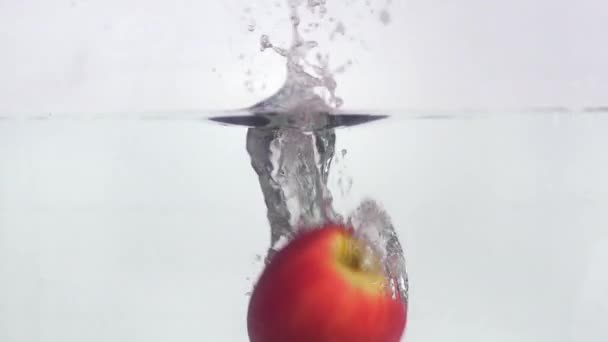 Fruits falling into water and floating in slow motion