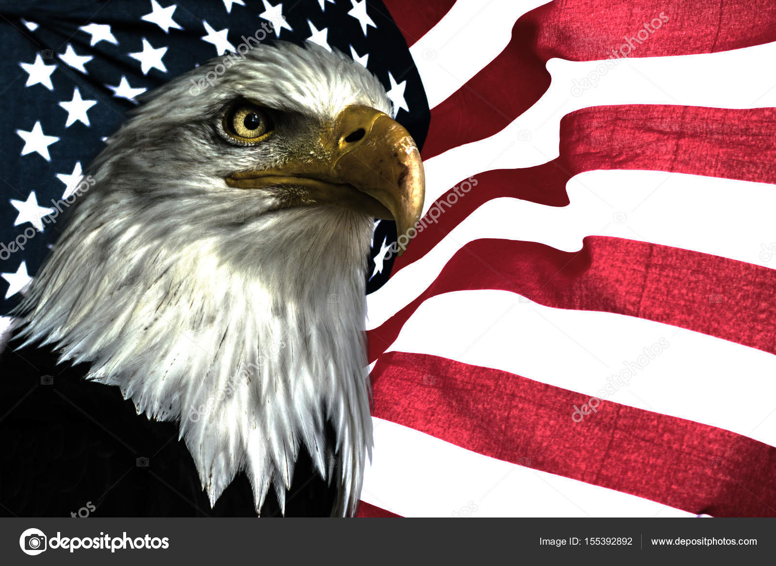 american eagle with flag stock photo denisapro 155392892