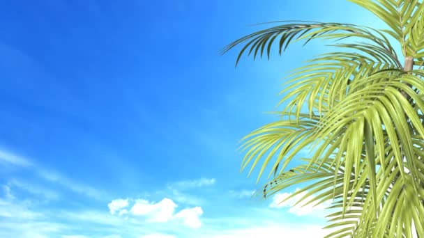 Tropical palm leaves with blue sky. 3D illustration