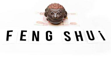 moneys toad feng shui