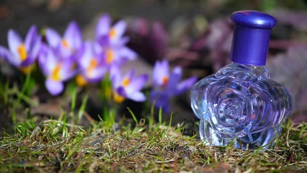 Glass Perfume Bottle Spring crocus Flowers