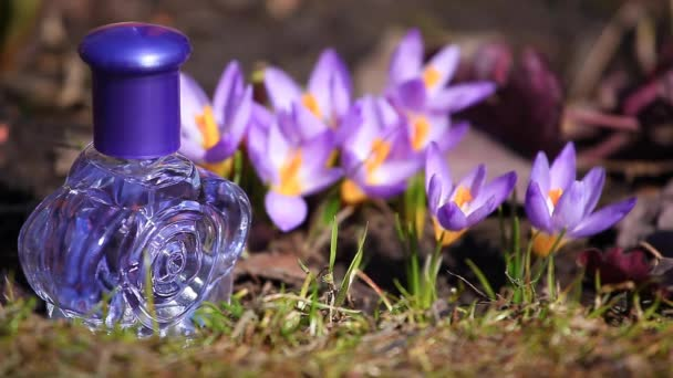 Glass Perfume Bottle Spring crocus Flowers
