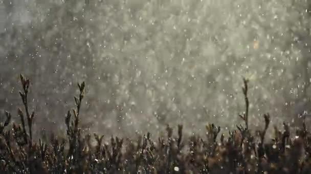 Zahradní zavlažovací Vodní kapky