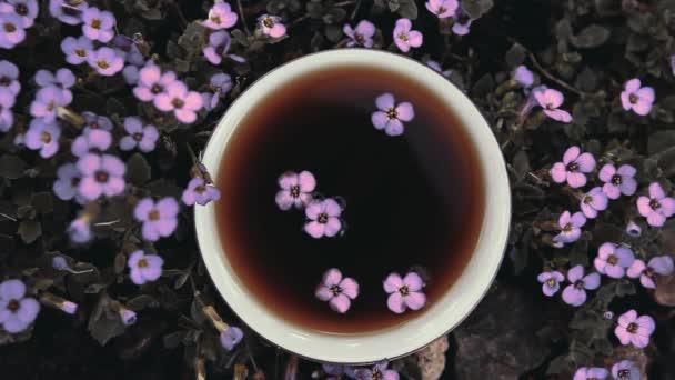 Black Chinese Tea garden flowers