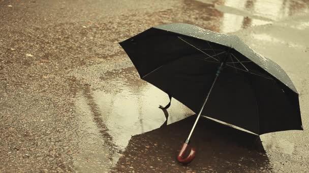 Regenschirm regen schnee asphalt hintergrund hd material