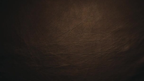 natural dark sharp leather background hd footage