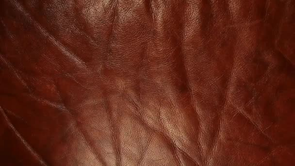 natural sharp brown leather background hd footage