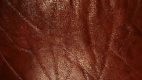 přírodní ostré hnědé kůže pozadí hd záběry