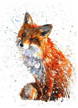 Fox watercolor predator