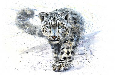 Snow leopard watercolor