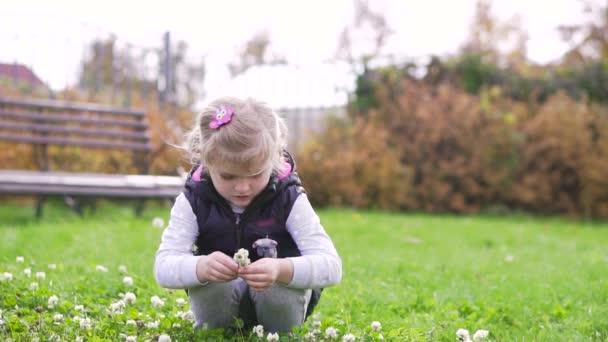 singing-little-flower-in-the-meadow