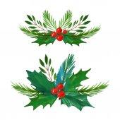 Weihnachten Stechpalme Zweige