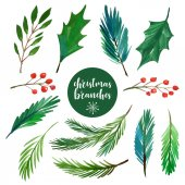 Fotografie Set aus verschiedenen Weihnachtszweigen