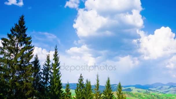 Karpaten im Sommer