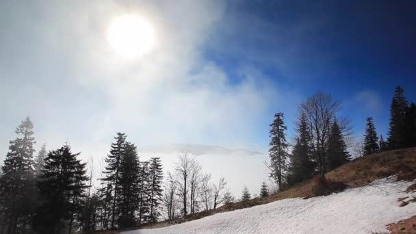 landscape of carpathian mountains